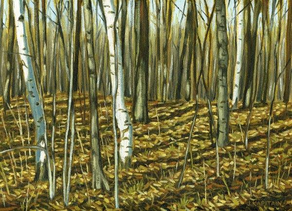 'Near Hilton Falls, Ontario' (2012) by Jamie Kapitain.