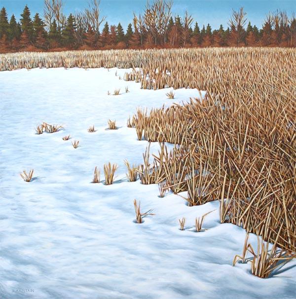 'Guelph Lake, Winter' (2012) by Jamie Kapitain.