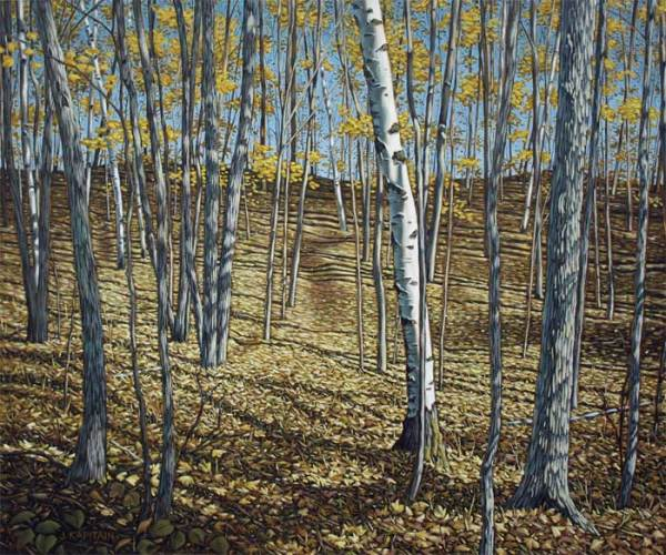 'Late Autumn Near Fortescue Lake (2012) by Jamie Kapitain.