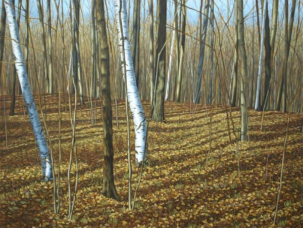 'Near Hilton Falls, Ontario' (2012) by Jamie Kapitain