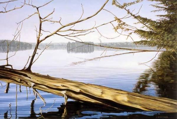 'Early Morning, Salmon Lake' (2005) by Jamie Kapitain.