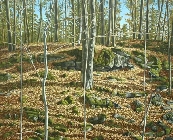 'On The Escarpment at Hilton Falls' (2012) by Jamie Kapitain.