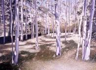 'Guelph Arboretum' (2004) by Jamie Kapitain.