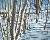 'Winter Birches, Mono Cliffs No.2' (2008) by Jamie Kapitain