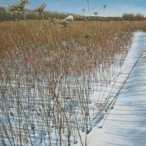'Winter Field with Wild Carrot, Mount Nemo' (2010) by Jamie Kapitain