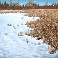 'Guelph Lake, Winter' (2012) by Jamie Kapitain