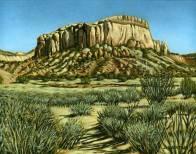 'Near Abiquiu, New Mexico' (2011) by Jamie Kapitain