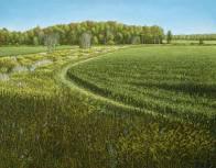 'Autumn Field Near Ariss, Ontario' (2012) by Jamie Kapitain. Oil canvas, 22x28 inches.